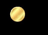 NAMlitCoin